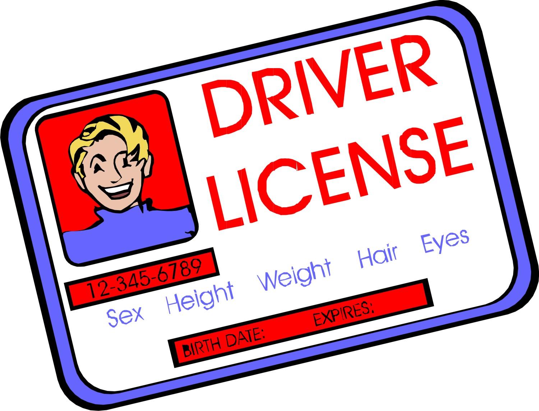 Resultado de imagem para driver's license.