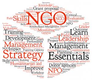 非政府组织招聘2020