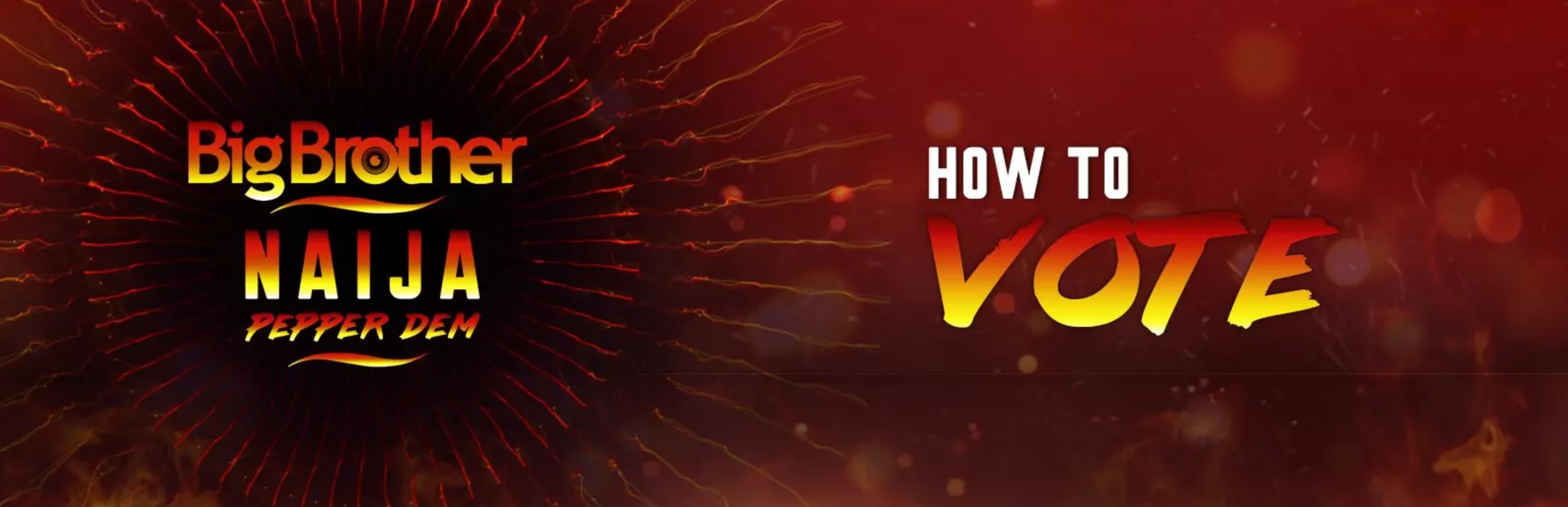 Big Brother Naija Housemate Voting 2019 | Save Your