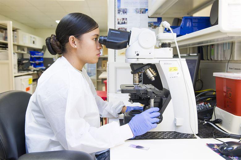 أفضل برامج الهندسة الطبية الحيوية للطلاب 2020 | آخر التحديثات