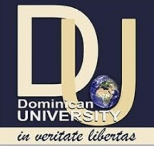 Dominican University Ibadan Post UTME Screening Form
