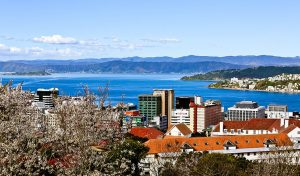 Nieuw-Zeeland Study Abroad Programs
