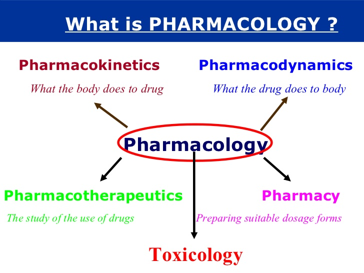 Common Difference Between Pharmacology and Pharmacy