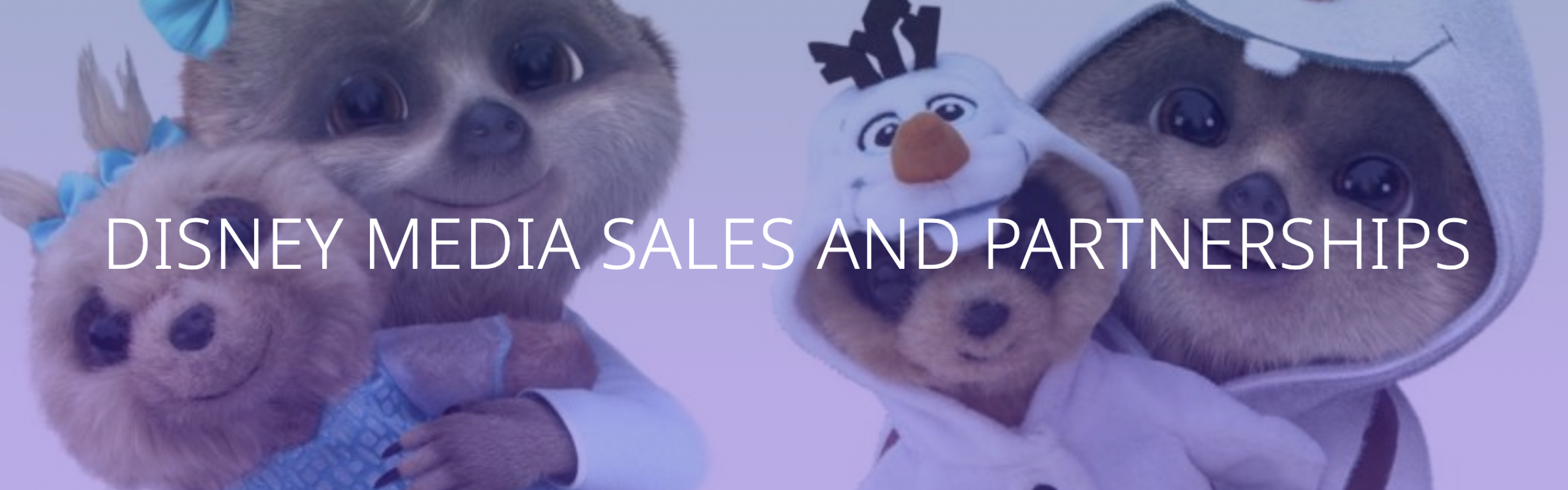 Disney Africa Media Sales and Partnerships