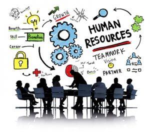 Whiteboard HR Recruitment 2019