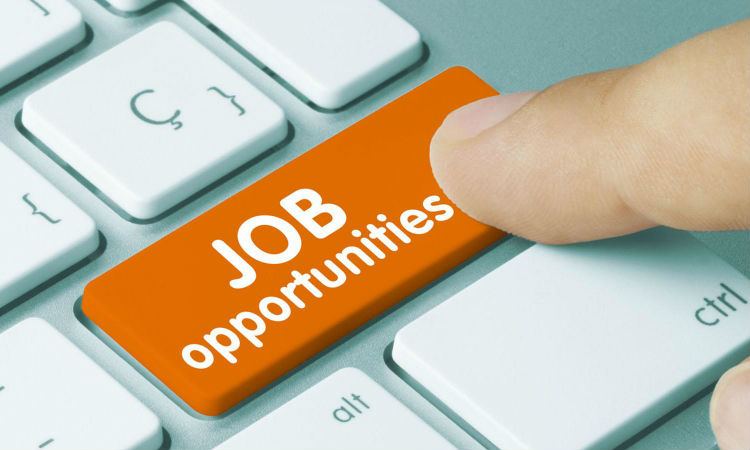 Sales and Marketing Executives Jobs in a Telecoms Service
