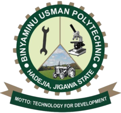 Binyaminu Usman理工学院的课程和要求