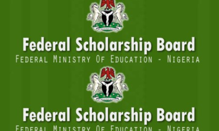 Federal Government Scholarship Deadlines 2020 and Application Updates