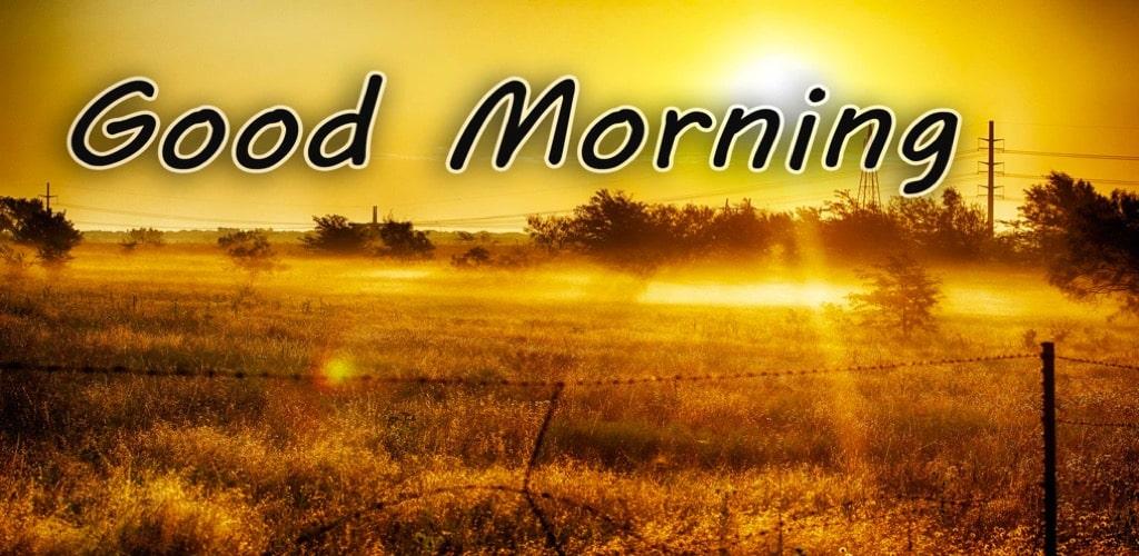 july 2021 good morning