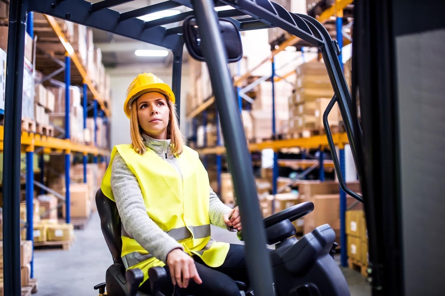 Types of Warehouse Management Systems (WMS)