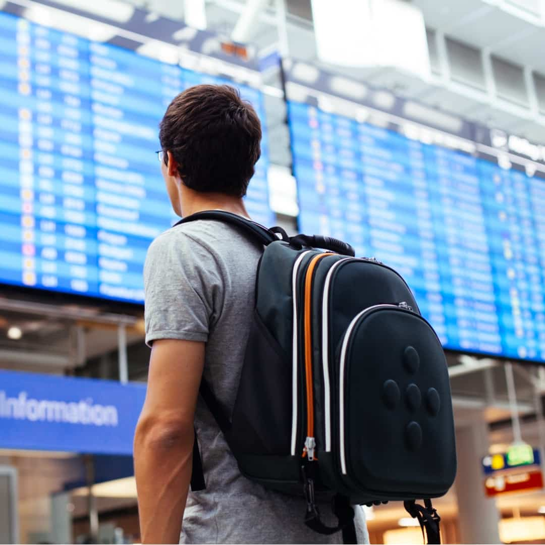 How to win travel opportunity