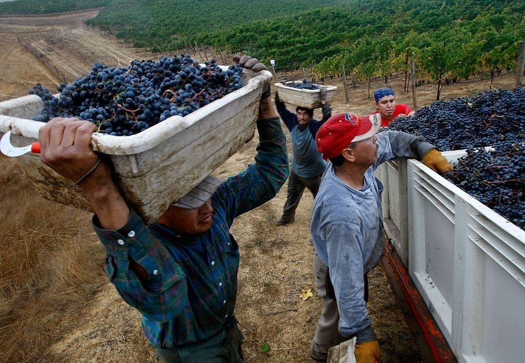 New immigrants jobs in North America