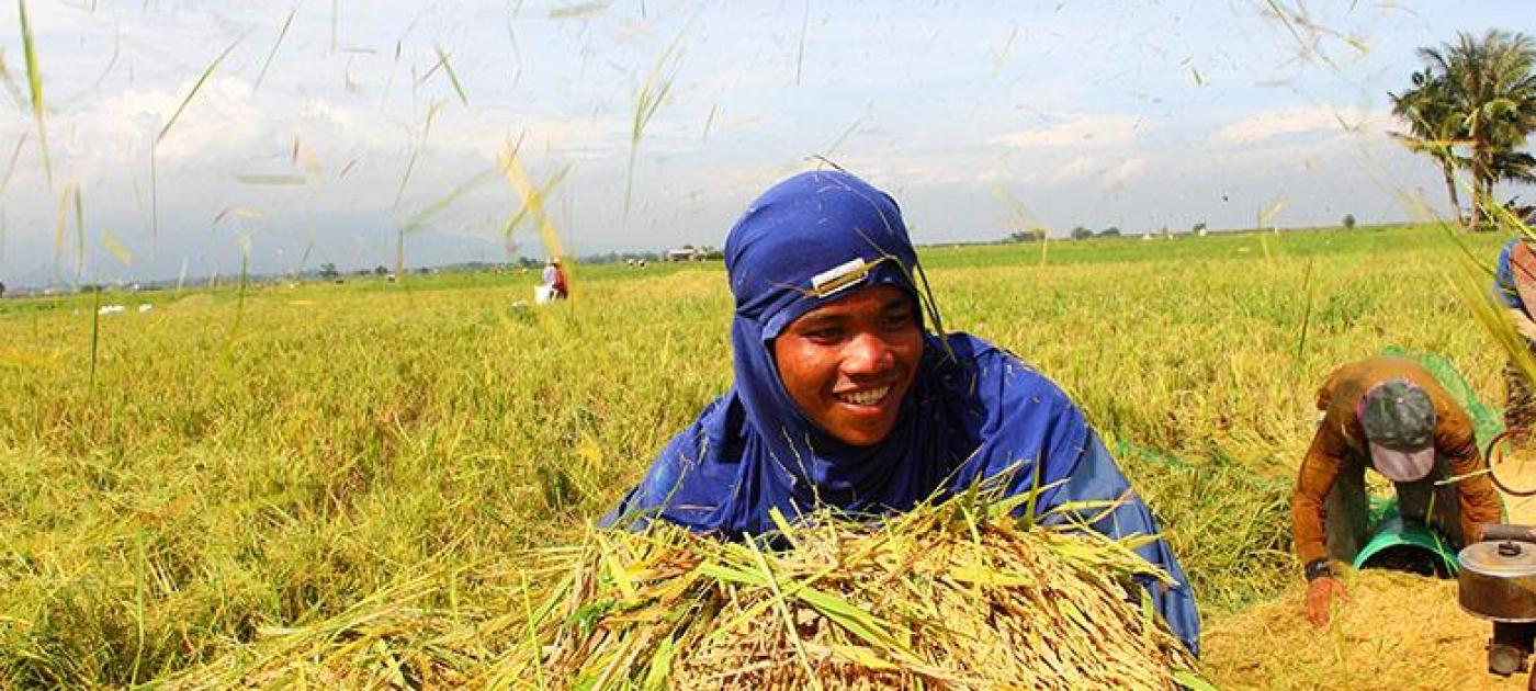 Things about Global Greengrants Fund (GGF)