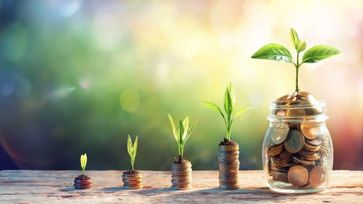 Things about Global Greengrants Fund (GGF) That You Should Know