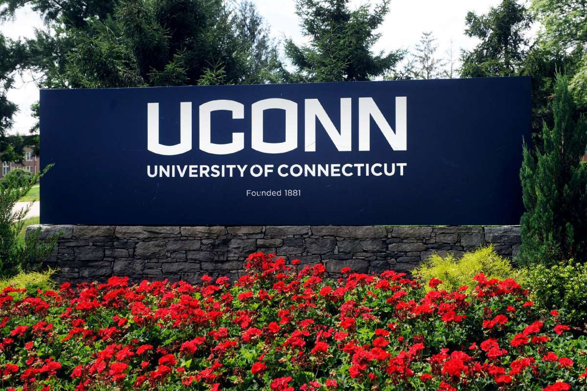 University of Connecticut Ranking in Academic Disciplines and Faculties