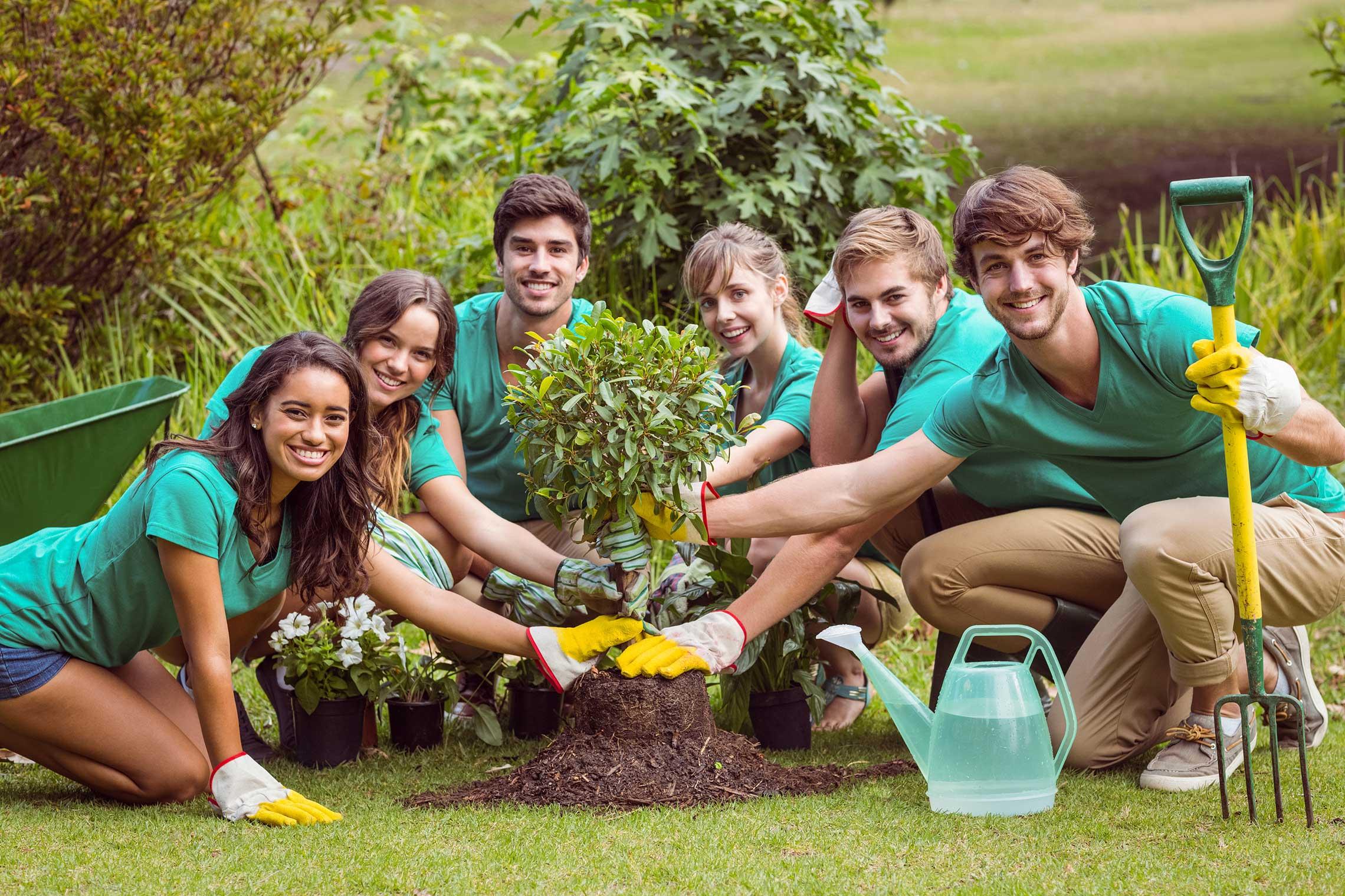 Domestic Endowments - united nations grants